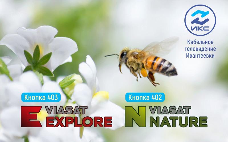 Kanaly-Viasat-IKS-
